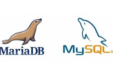 آموزش دسترسی راه دور به Mysql و MariaDB