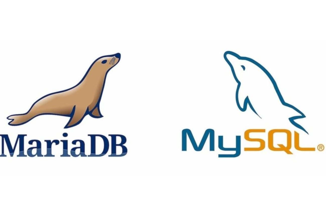 بررسی نسخه پایگاهداده MariaDB یا MySQL